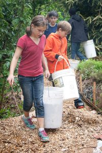 Students adding mulch to garden.