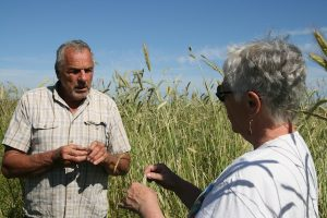 Lyle and Charlene discuss the trial grain crop.